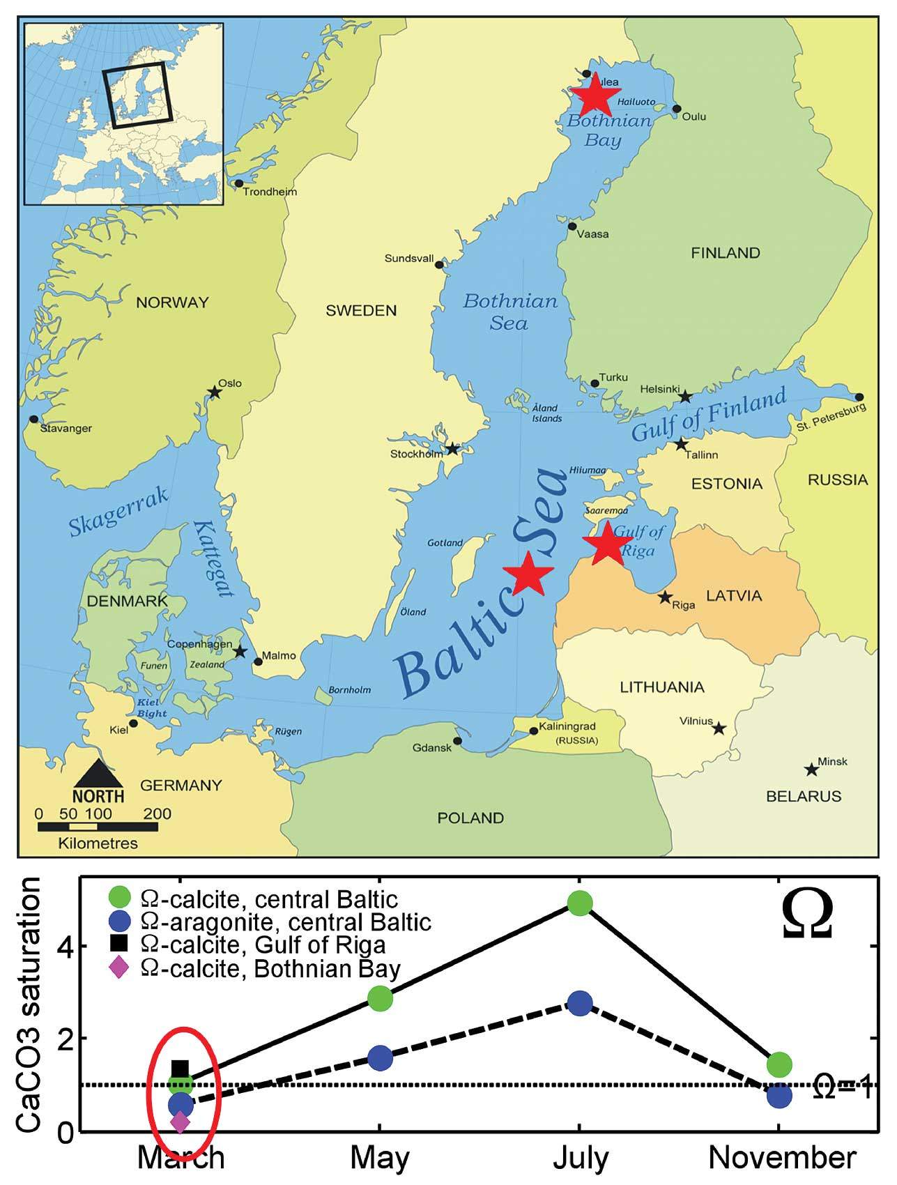 Low winter CaCO3 saturation in the Baltic Sea: consequences for ...